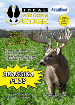 Ideal Northern Edge Brassica Plus Food Plot Seed - 2.5 Lbs