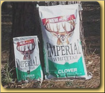 Perennial Food Plot Selection Guide