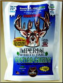 Imperial Whitetail Winter-Greens 12# ( 2 acres )